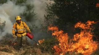 Силен горски пожар около Стара Кресна