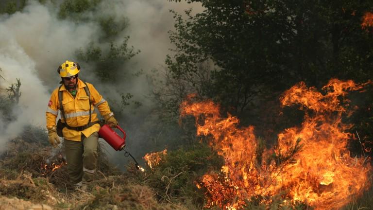 Пожарът в Изворище е локализиран