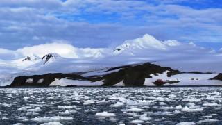 Учени прибраха първите зеленчуци от оранжерия в Антарктида