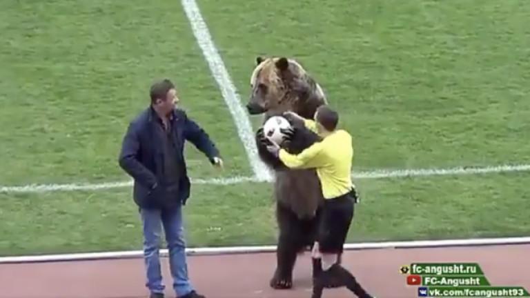 Остри критики по света срещу използването на мечка на футболен мач в Русия