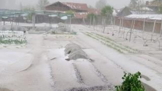 Комисия оценява щетите от градушката в Нова Загора
