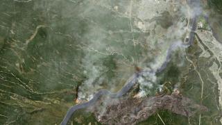 88 000 евакуирани заради горски пожари в Канада