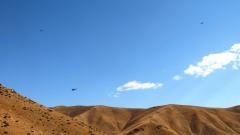 Турски дрон уби двама иракски командири