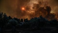 Голям горски пожар в ръкава Ситония на Халкидики