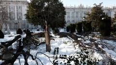 """Бурята """"Филомена"""" блокира Мадрид, препорачват на хората да си останат у дома"""