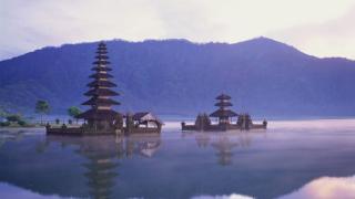 Индонезия хареса Монтана