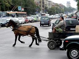 Забраняват каруците в Пловдив