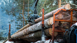 Топлите зими заплашват една от най-важните индустрии в Скандинавия