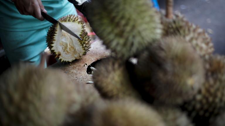 СЗО призова да се затворят мокрите пазари