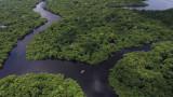 Новият президент на Бразилия застрашава тропическите гори на Амазония