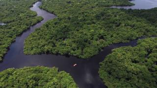 Невижданите жители на Амазонка