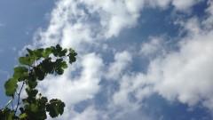 Слънчево, на места - кратък дъжд и гръмотевици