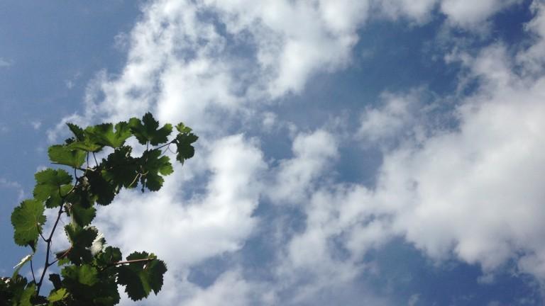 Предимно слънчева сряда, ще духа слаб до умерен вятър