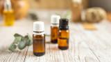 Маслото от жожоба, подхранване, хидратиране и други ползи за кожата от растението