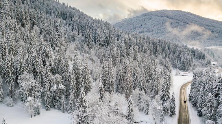 Снегове и виелици, 16 области са с оранжев и с жълт код