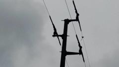 Обезопасяват електрически стълбове за защита на птиците в района на Белене