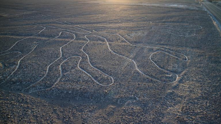 Котката на 2000 години в пустинята Наска