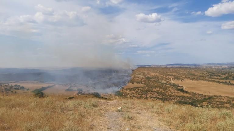 Напълно потушени са пожарите в Хасковска област, съобщи БНР. В
