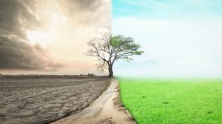 Природата на Земята е в най-лошото си състояние в историята на човечеството