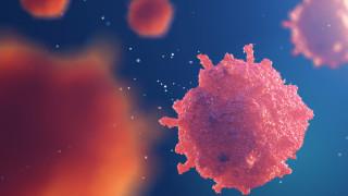 Учени разработиха 10-минутен универсален тест за рак