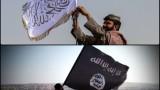 Цветовете на джихада: За ДАЕШ, талибаните и световния халифат