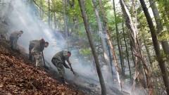Два вертолета помагат в гасенето на пожара край Югово и Нареченски бани