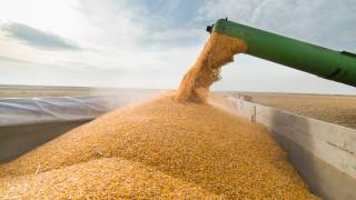 Износът на зърно от ЕС изостава, вносът нарасна с 26%