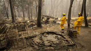 Над 500 000 души бягат от десетки смъртоносни горски пожари в САЩ