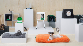 IKEA пуска мебели за домашни любимци