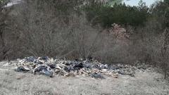 Откриха незаконно изхвърлени животински отпадъци край Враца