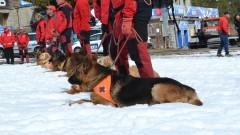 Ако тръгвате към снежните планини - основни съвети от планинските спасители