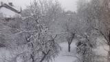 Сняг в голяма част от страната