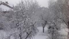Сняг за Нова година обещават синоптиците