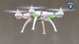 Орли пазят затвори, летища и АЕЦ от злонамерени дронове (ВИДЕО)