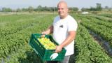 Ключът към качествената българска продукция е в добре организираната работа