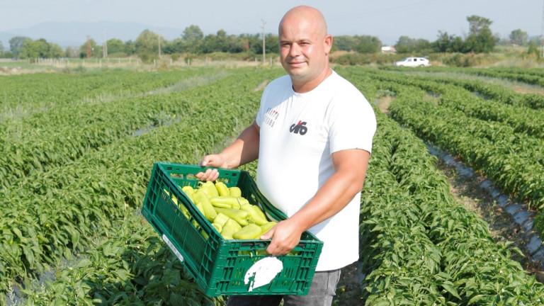 Земеделецът Пламен Михайлов и агрономът Стоян Манджуков се занимават със