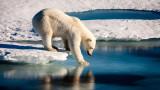 Глобалното затопляне, океаните и рекордното покачване на температурите в тях