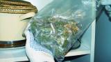 Явор Бахаров е бил хванат с марихуана