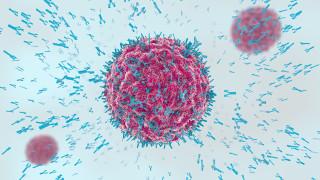 Пълноценен имунитет срещу COVID-19 - до два месеца след ваксинация