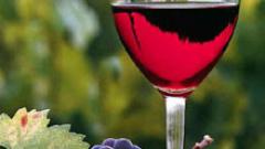 Първанов откри винарска изба в Свиленград