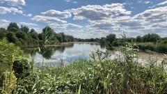 Забраниха риболова в Гребната база на Ямбол до 30 юни