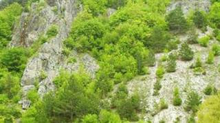Откриват екопътека край Лилячкия язовир