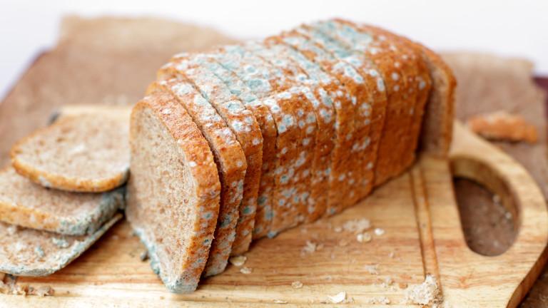 Безопасна ли е плесента по хляба