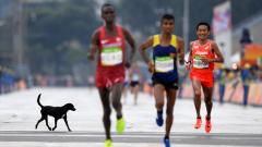 """""""Изненада"""": Кенийци спечелиха престижен полумаратон"""
