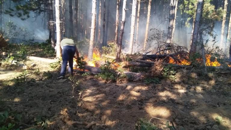 Нов горски пожар пламна днес на Сакар планина, предаде bTV.