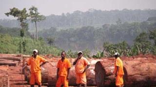 Лесовъдите стачкуват на 3 септември