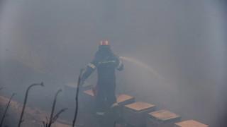 Пожарникари от цяла Гърция се борят с пожар на о. Евбея