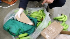 Испанската полиция откри 17 кг кокаин в изкуствени банани