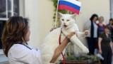 В Русия: Ахил ще казва кой кого на Мондиал 2018!