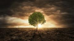 Ограничаването до 2 градуса на глобалното затопляне няма да ни спаси